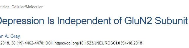 Long-Term Depression Is Independent of GluN2 Subunit Composition